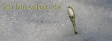 Titelbilder für Facebook