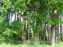 Wald,Feld & Wiese